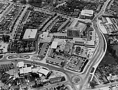 OHC002742-01