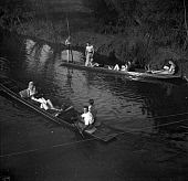 OHC002691-01