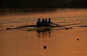 PAD002878-01